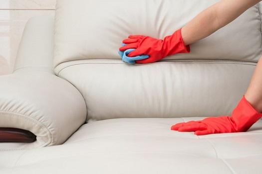 cleaning-divan-525